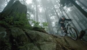 Rutes amb bicicleta de muntanya i carretera